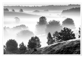 Premium poster Misty Dutch Hillls