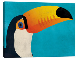 Canvas print  Toucan - coico