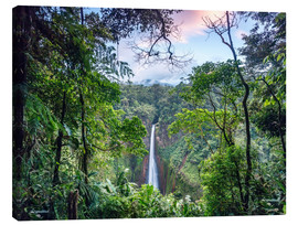 Canvas print  Rainforest and Waterfall, Costa Rica - Matteo Colombo