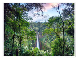 Premium poster  Rainforest and Waterfall, Costa Rica - Matteo Colombo