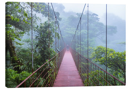 Canvas  Hiker on a suspension bridge, Costa Rica - Matteo Colombo