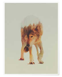 Premium poster  Wolf in the Woods - Andreas Lie