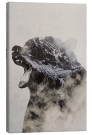 Canvas print  Bear In The fog - Andreas Lie
