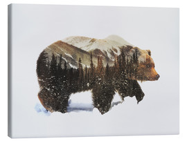 Canvas print  Arctic grizzly bear - Andreas Lie