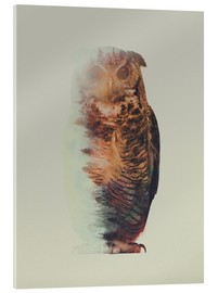 Acrylic glass  Norwegian Woods The Owl - Andreas Lie