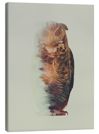 Canvas print  Norwegian Woods The Owl - Andreas Lie