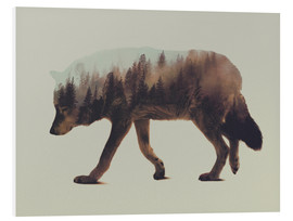 Foam board print  Norwegian Woods The Wolf - Andreas Lie