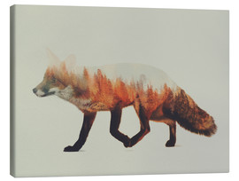 Canvas print  Norwegian woods, The Fox - Andreas Lie