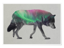Andreas Lie - wolf in the aurora borealis