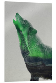 Acrylic print  Howling in the Aurora Borealis - Andreas Lie