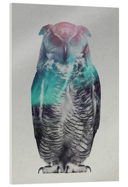 Acrylic glass  Owl in the aurora borealis - Andreas Lie