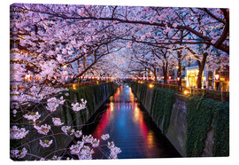 Canvas  Pink cherry blossoms in Tokyo Japan - Jan Christopher Becke