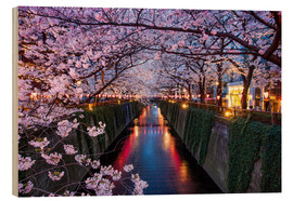 Wood print  Pink cherry blossoms in Tokyo Japan - Jan Christopher Becke