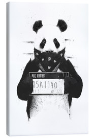 Canvas  Bad panda - Balazs Solti
