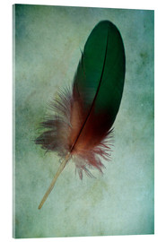 Acrylic glass  Green feather - Jaroslaw Blaminsky