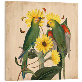 Wood print  Oh my parrot II - Mandy Reinmuth