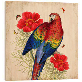 Wood print  Oh My Parrot III - Mandy Reinmuth