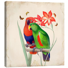 Canvas  Oh My Parrot I - Mandy Reinmuth