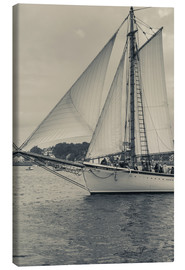 Canvas  Schooner Festival - Sailing ship in Gloucester harbor - Walter Bibikow