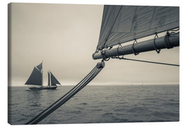 Canvas  Massachusetts, Schooner Festival, schooners in Gloucester Harbor. - Walter Bibikow