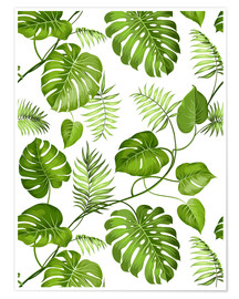 Premium poster  Monstera and palms