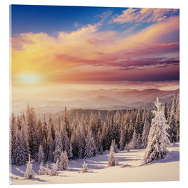 Acrylic print  snowy forest in the Alps