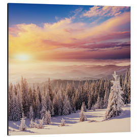 Aluminium print  snowy forest in the Alps
