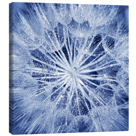 Canvas print  like an ice crystal