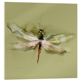 Acrylic glass  Dragonfly in watercolor