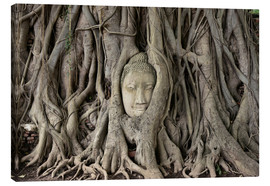 Canvas print  Buddha statue in the tree roots at Wat Mahathat
