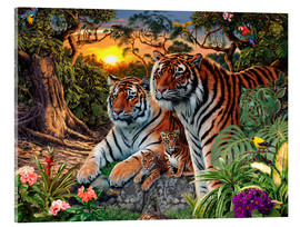 Acrylic print  Hidden Tiger - Steve Read