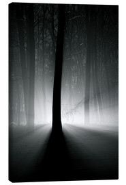 Canvas print  Winter light in the trees