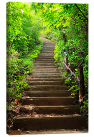 Canvas print  Stairway through the forest
