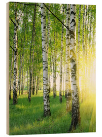 Wood print  Birches in summer forest