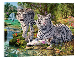 Acrylic glass  White Tiger Clan - Steve Read