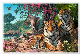 Premium poster  Tiger Sanctuary - Steve Read