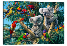 Canvas print  Koala Outback - Steve Read