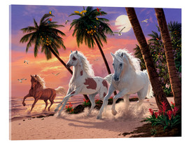 Acrylic glass  White Horses - Steve Read