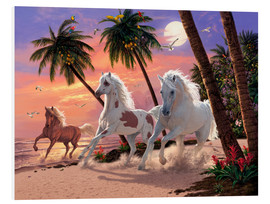 Foam board print  White Horses - Steve Read