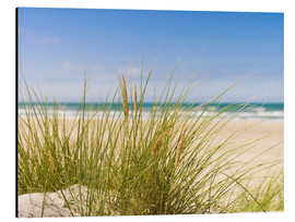 Aluminium print  Beach with dune grass in sand