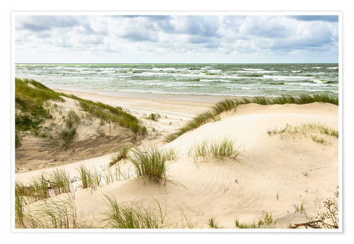 Premium poster Sand dunes on the Baltic Sea