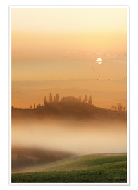 Premium poster Fog in Tuscany