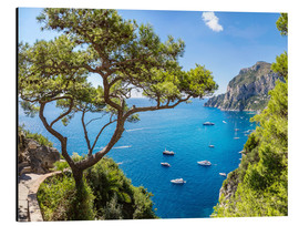 Aluminium print  A beautiful summer on Capri