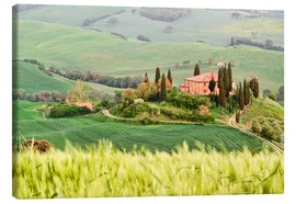 Canvas print  typical Tuscany landscape