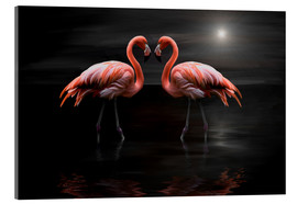 Acrylic print  Flamingos at night - Heike Langenkamp