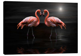 Heike Langenkamp - Flamingos at night
