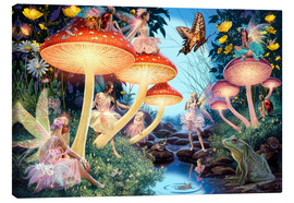 Canvas print  Toadstool - Steve Read