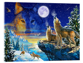 Acrylic print  Howling Wolves - Adrian Chesterman
