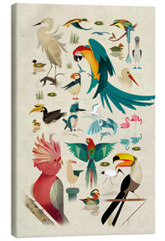 Canvas print  Birds - Dieter Braun