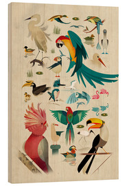Wood print  Birds - Dieter Braun